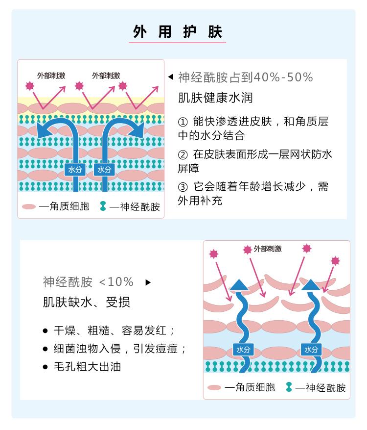 B006神经酰胺水凝精华霜-PC_07.jpg